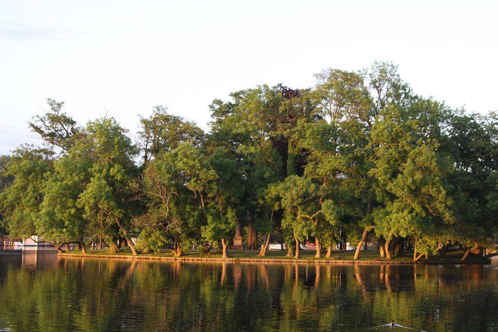 Die Liebesinsel von Mirow in der Abendsonne