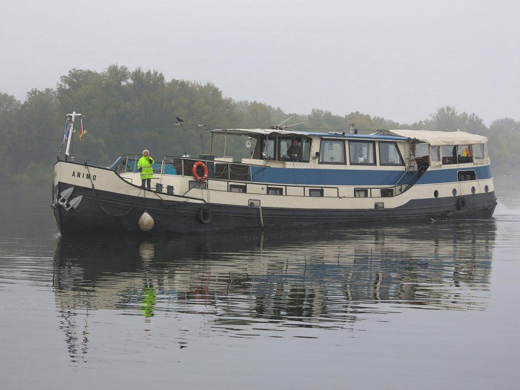 Unser «Schulschiff» auf der Elbe, die «M.S. Animo»
