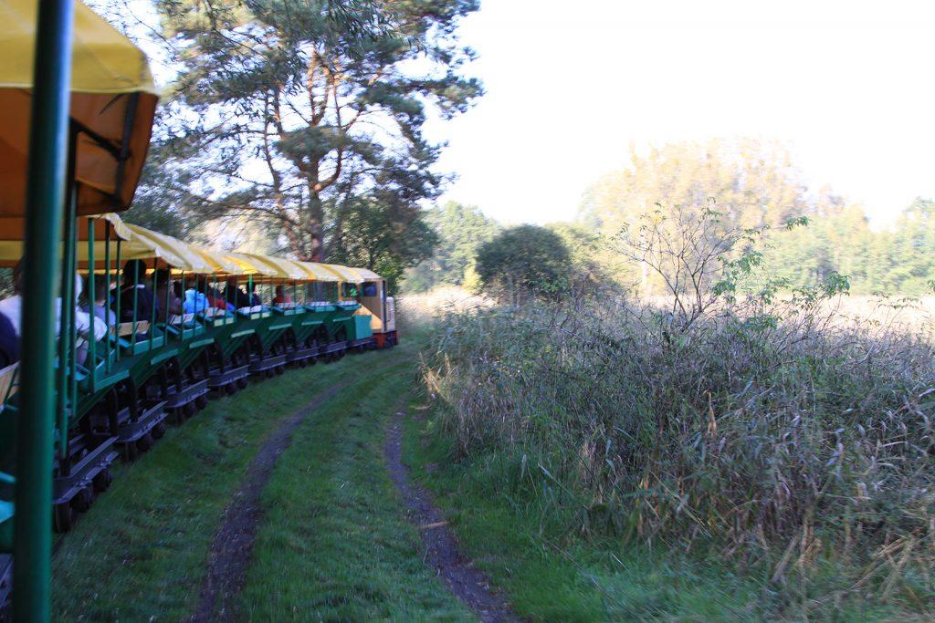 Mit der ehemaligen Tonlorenbahn durch den Naturpark