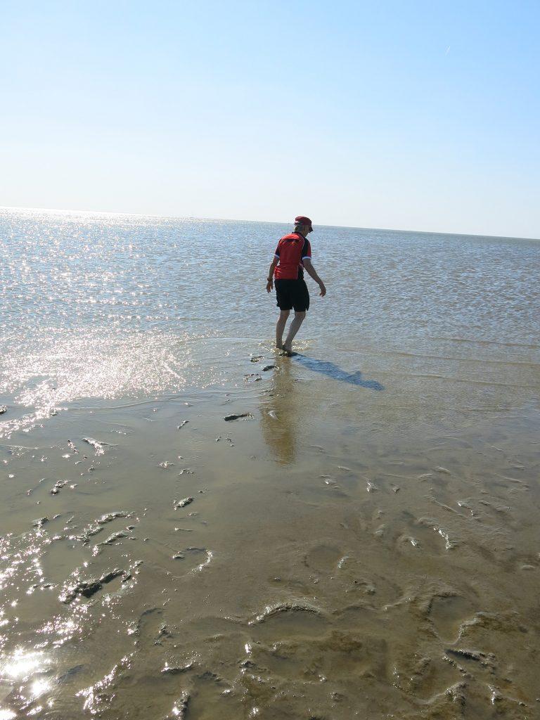 Das Wattenmeer bei Ebbe – waten im Schlick