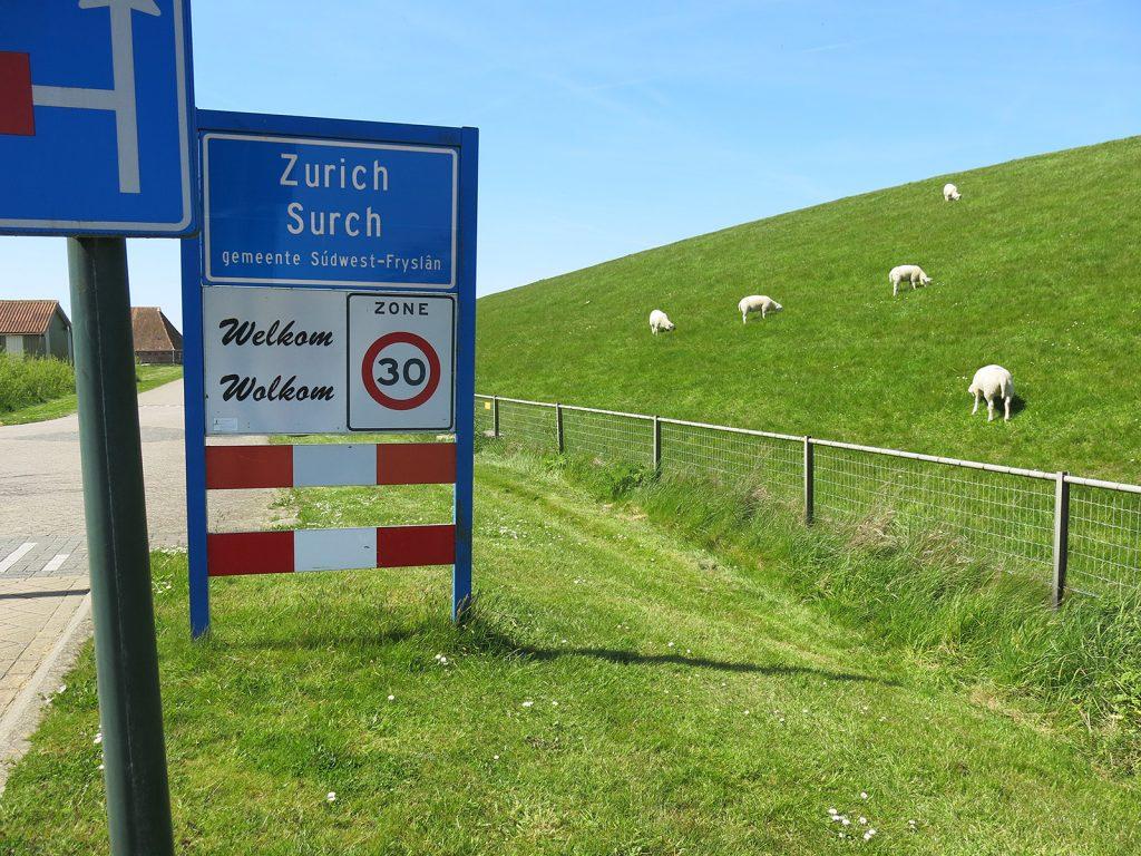 Wo Schafe weiden – das friesische «Zurich»